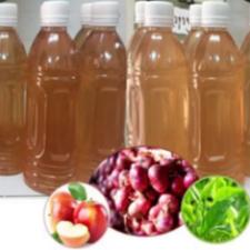Quy trình sản xuất nước uống hành tím